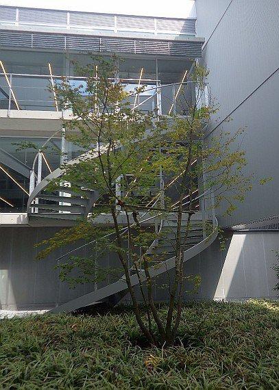 20201002_本社新館完成_photo3.jpg