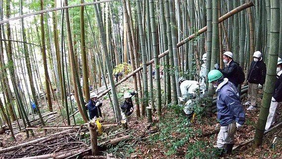 201121_東播用水里地里山保全_photo3.jpg